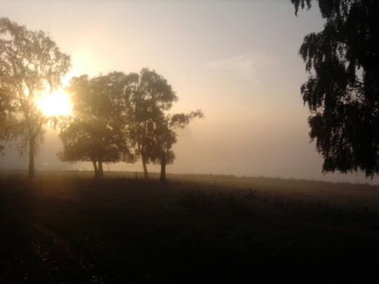 Northamptonshire Dawn